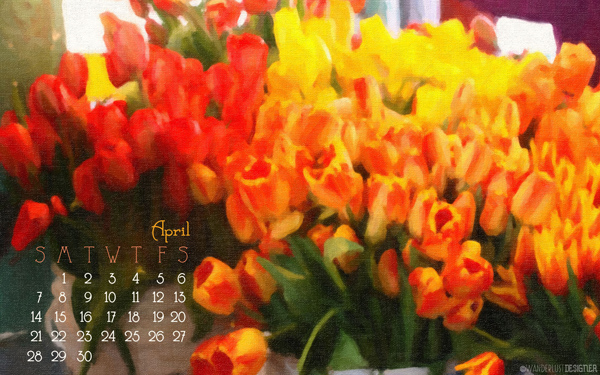 April 2013- Tulips at the Seattle Public Market Desktop Image from Wanderlust Designer