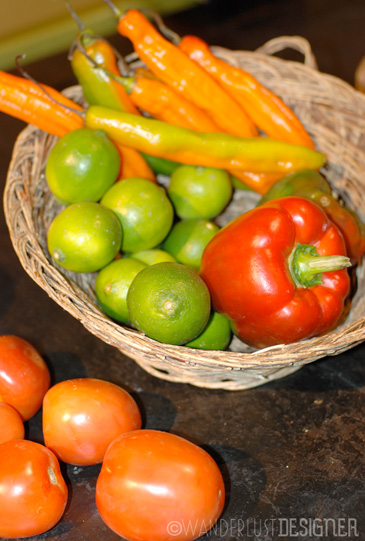 Aji Amarillo Peppers, Red Peppers, Tomoatoes and Limes by Wanderlust Designer