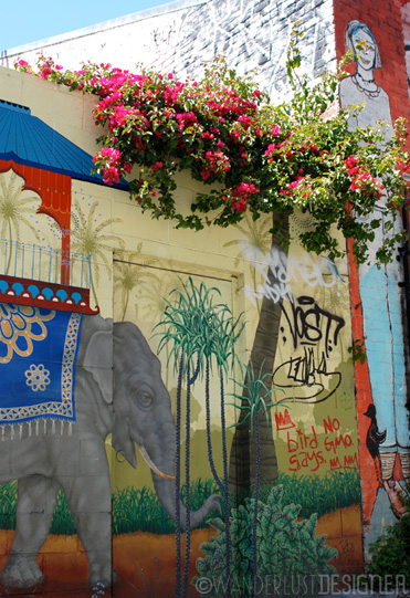 Using Nature with Street Art, Clarion Alley, Mission District, San Francisco (photo by Wanderlust Designer)
