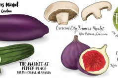 Fresh Farmers Markets in the South and East by Wanderlust Designer
